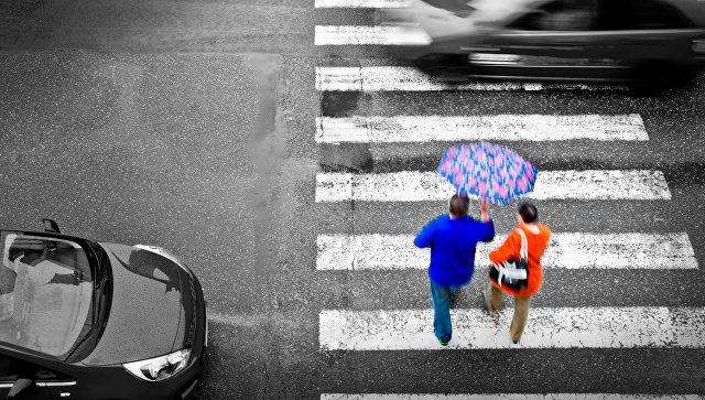 ГД приняла закон о повышении штрафов для непропустивших пешеходов водителей