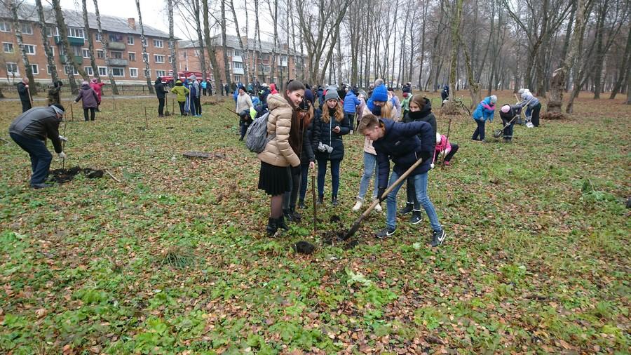 В Сокольниках высадили 200 саженцев деревьев