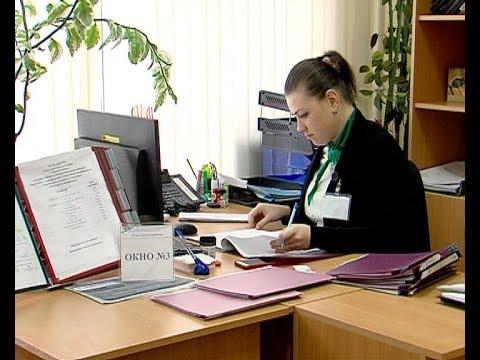 О ситуации на рынке труда в Новомосковске
