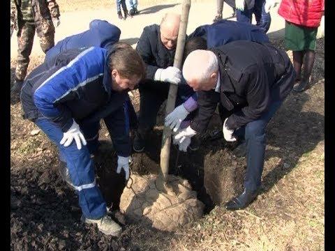 Акция «Новомосковск, дыши!» продолжается. В детском парке высажены деревья