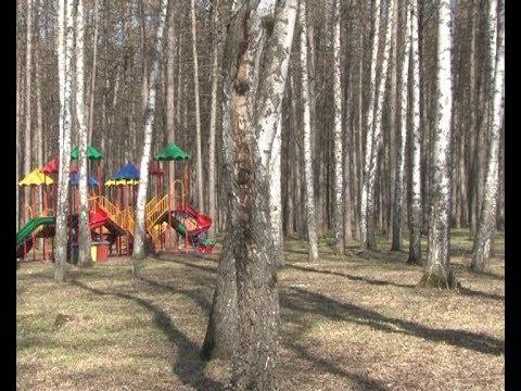 Обновление деревьев в Детском парке