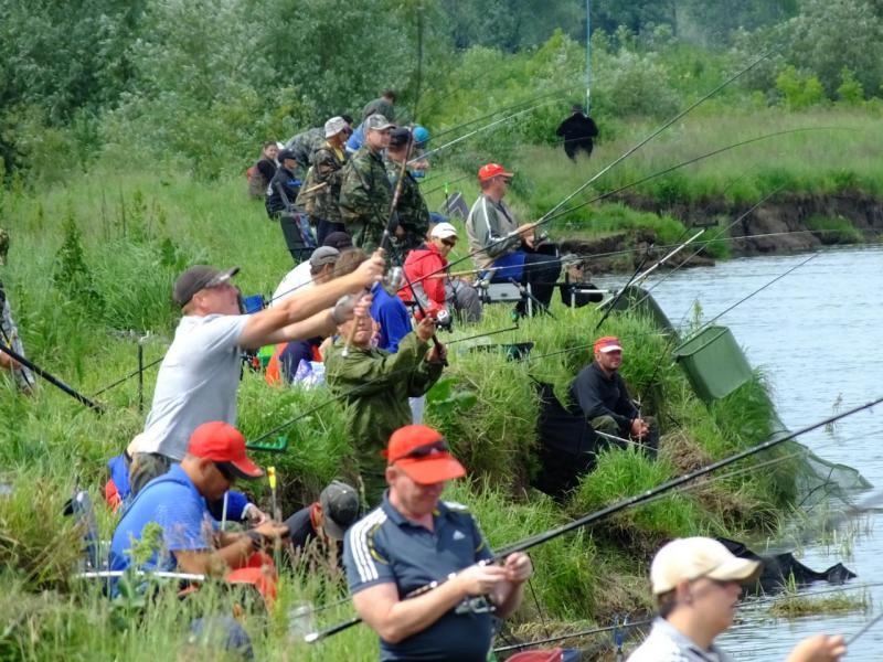 Соревнования по ловле рыбы донной удочкой