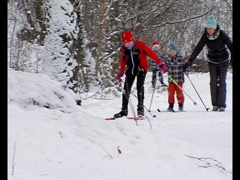 На территории города работают лыжные прокаты и ледовые катки