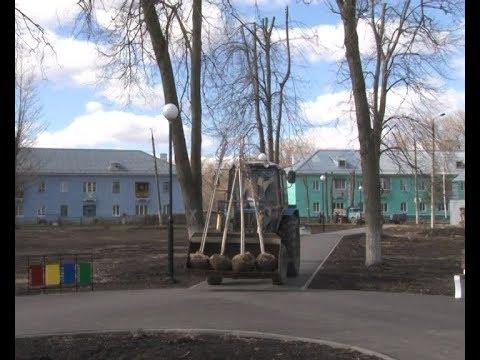 Новомосковцы озеленили сквер Заводского района