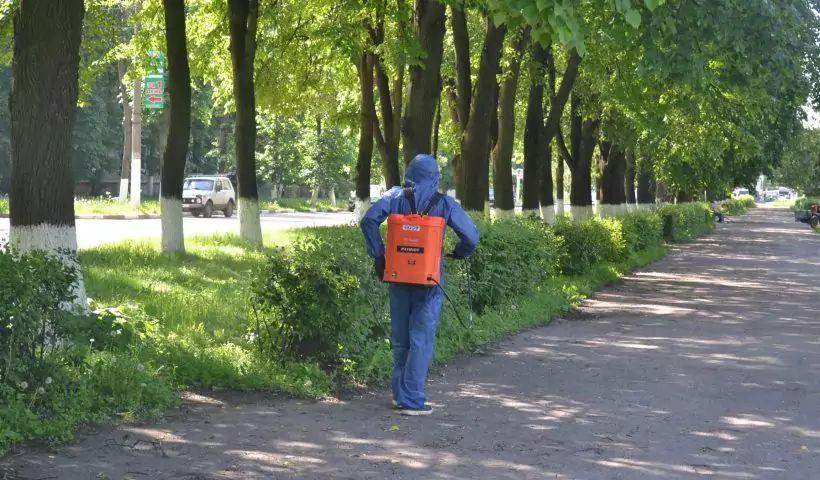 В Новомосковске проводится обработка от клещей