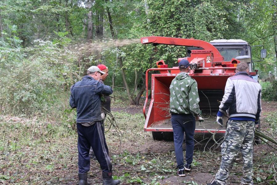 Масштабная уборка Урванского лесопарка