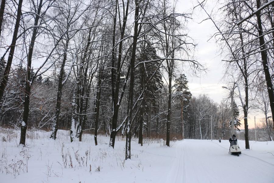 В Новомосковске прокладывают лыжную трассу