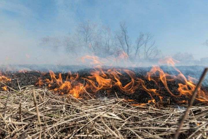 В Тульской области отменен особый противопожарный режим